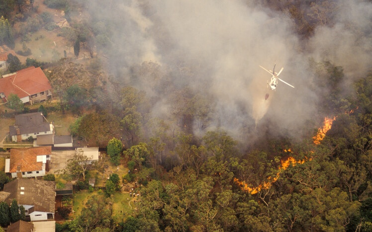 How a Tilcor roof can protect your home in wildfire season